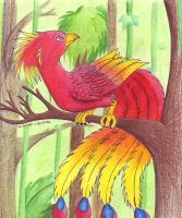 Jungle Phoenix by WhiteWingedAnwe
