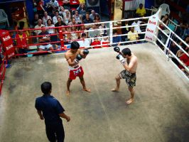 Thai Kick Boxing by alvse