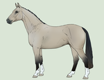 Horse Adoptable - CLOSED by Anonymous-Shrew