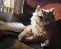 Cat Reclining painting by Art--Tool