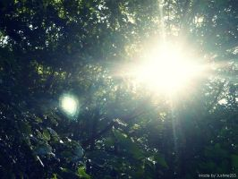 Sun through the leaves by JustMe255