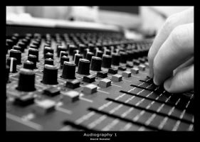 Audiography 1 by hensler