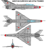 Mikoyan-Gurevich MiG-21YM by bagera3005