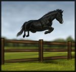 Why not to own an eventer by BangGoesReality