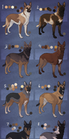German Malinois (closed) by Pred-Adopts