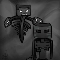 Wither Skeleton by TruCorefire