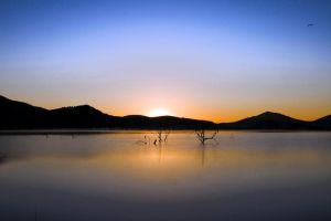 Pilanesberg Sunrise by Danie-07