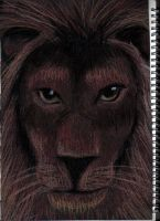 Lion by beprotybe