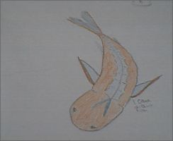 koi fish by orcalover165