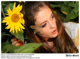 In the Sunflowers.7 by Della-Stock