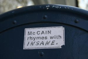 McCain rhymes with Insane by recklessfashion