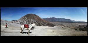 bromo adventures 1 by br3w0k