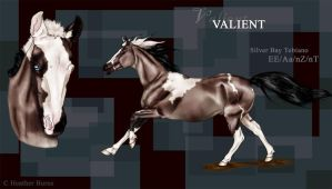 Valient by thunderjam1992