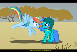 Rainbow dash and chelly by NightSilverChelly