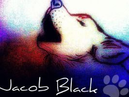 Jacob Black Wolf Pic by YoureAwful-ILoveYou