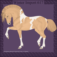 Winter Import 617 by ThatDenver