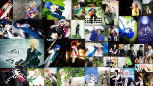 3rd Year Cosplay Collage! by naokunn