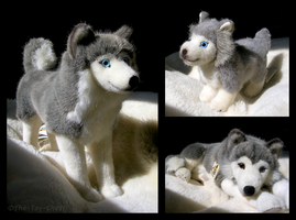 Kosen Husky Family by The-Toy-Chest