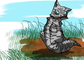 Jayfeather by catpain