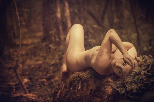 Wood Nymph by nikongriffin