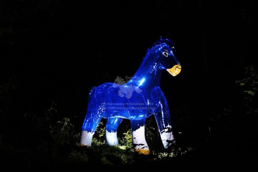Sapphire, the inflatable pool toy horse by HorseplayInflatables