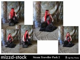 Steam Traveller Pack 2 by mizzd-stock
