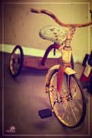 Vintage Tricycle by art21design