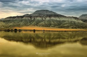In the Middle of Nowhere by dkokdemir