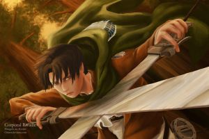 Corporal Rivaille by Onnor