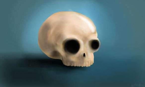 Sketch of the day: Skull  by WENDX14