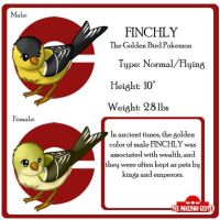 Fake Pokemon : Finchly by leedom111