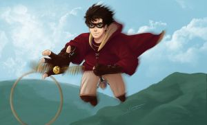 HP and the Golden Snitch by Skeetersaid