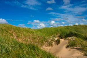 Dunes of the North sea by Pamba