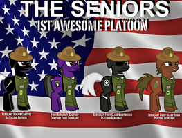 The Seniors by FirstAwesomePlatoon