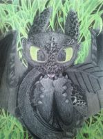 Baby Toothless by Zubaidit