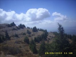 Al-Shouf overview by Magdyas