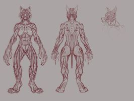 Worgen Redesign muscles by Proxzee
