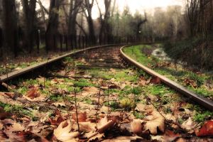 The railway from the autumn to by INTRU88