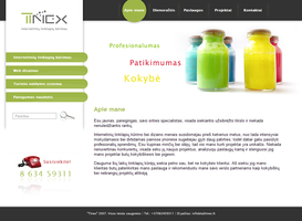 Web design for tinex.lt by dzbugy