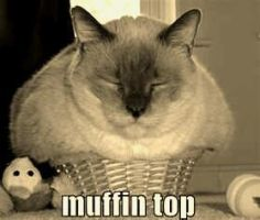 Muffin kitteh! by BeautifulNekoAngel