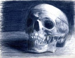 Skull - Drawing Class Project by MaliceInPlunderland