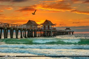 Seagull-Flying-Over-Naples-Pier-at-Sunset by CaptainKimo