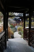 Chinese garden Stock 15 by Malleni-Stock