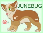 Junebug 2015 Official Ref by DeadOnContact