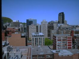 View from the office by philippeL