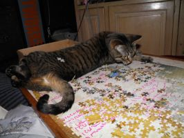 Cats and puzzles don't mix, just ask Kairi by forever-at-peace