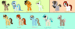 Pony Ocs -2013 by Buizel149