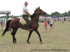 Hungarian Festival Stock 095 by CinderGhostStock