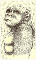 Gorilla Female by CalcifiedCrow