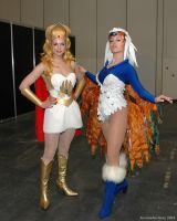 She-Ra and the Sorceress by ArcaneArchery